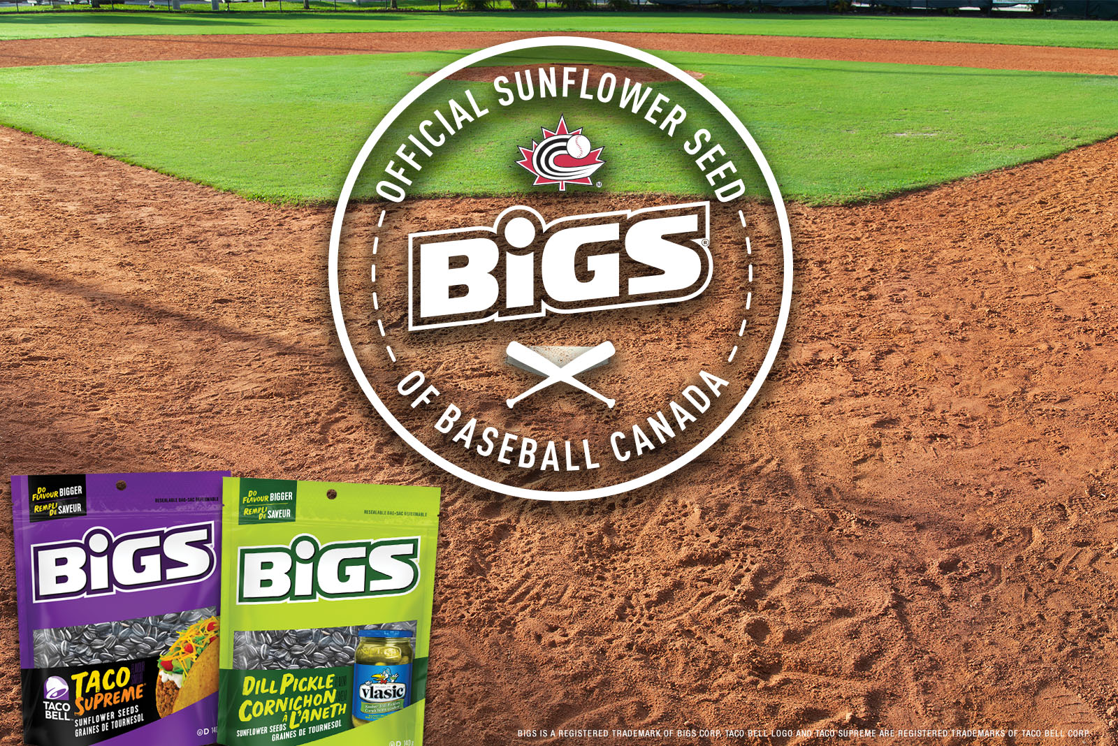 Baseball Canada reaches partnership with BIGS Seeds