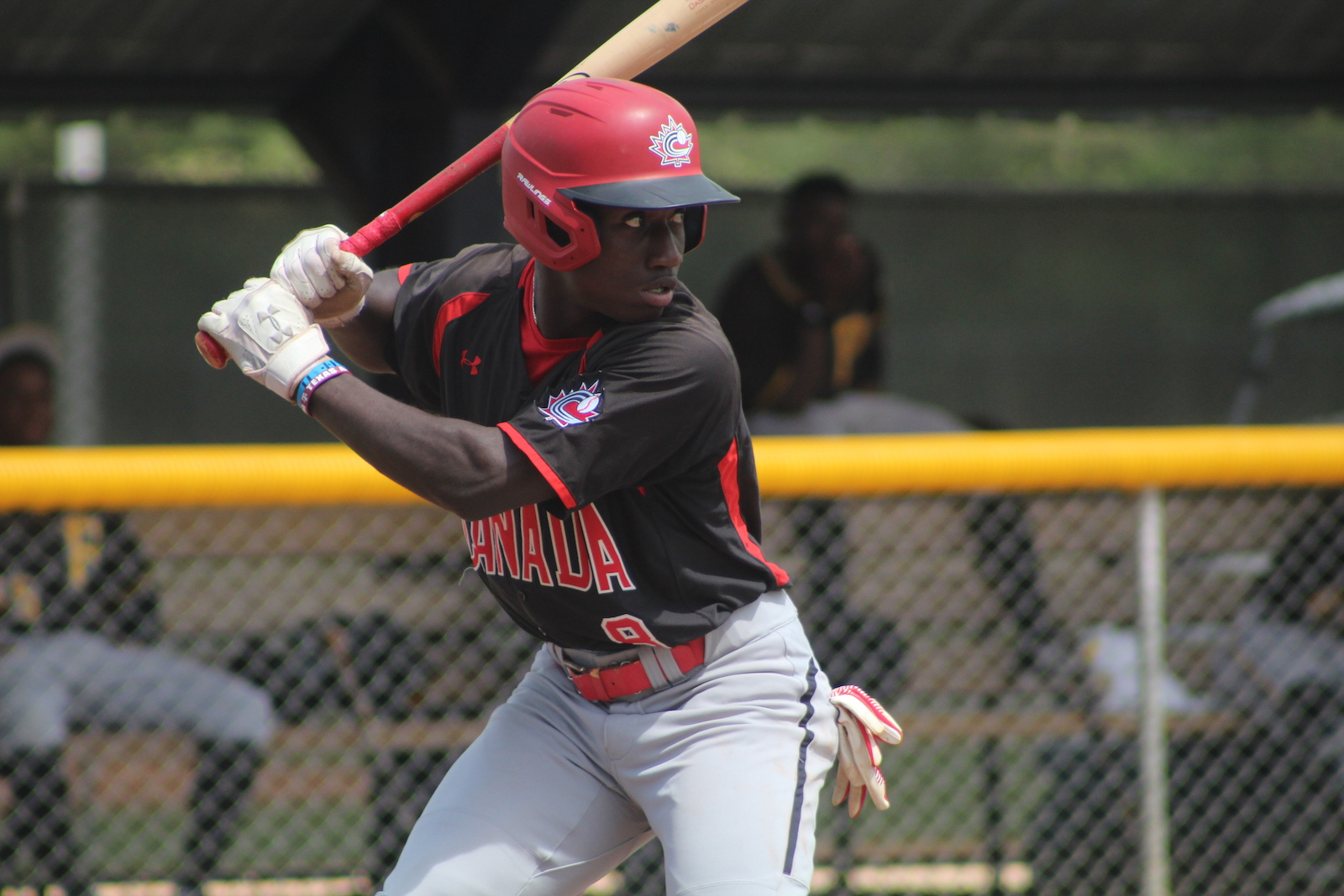 Baseball Canada reveals invitees for Junior National Team Selection Camp