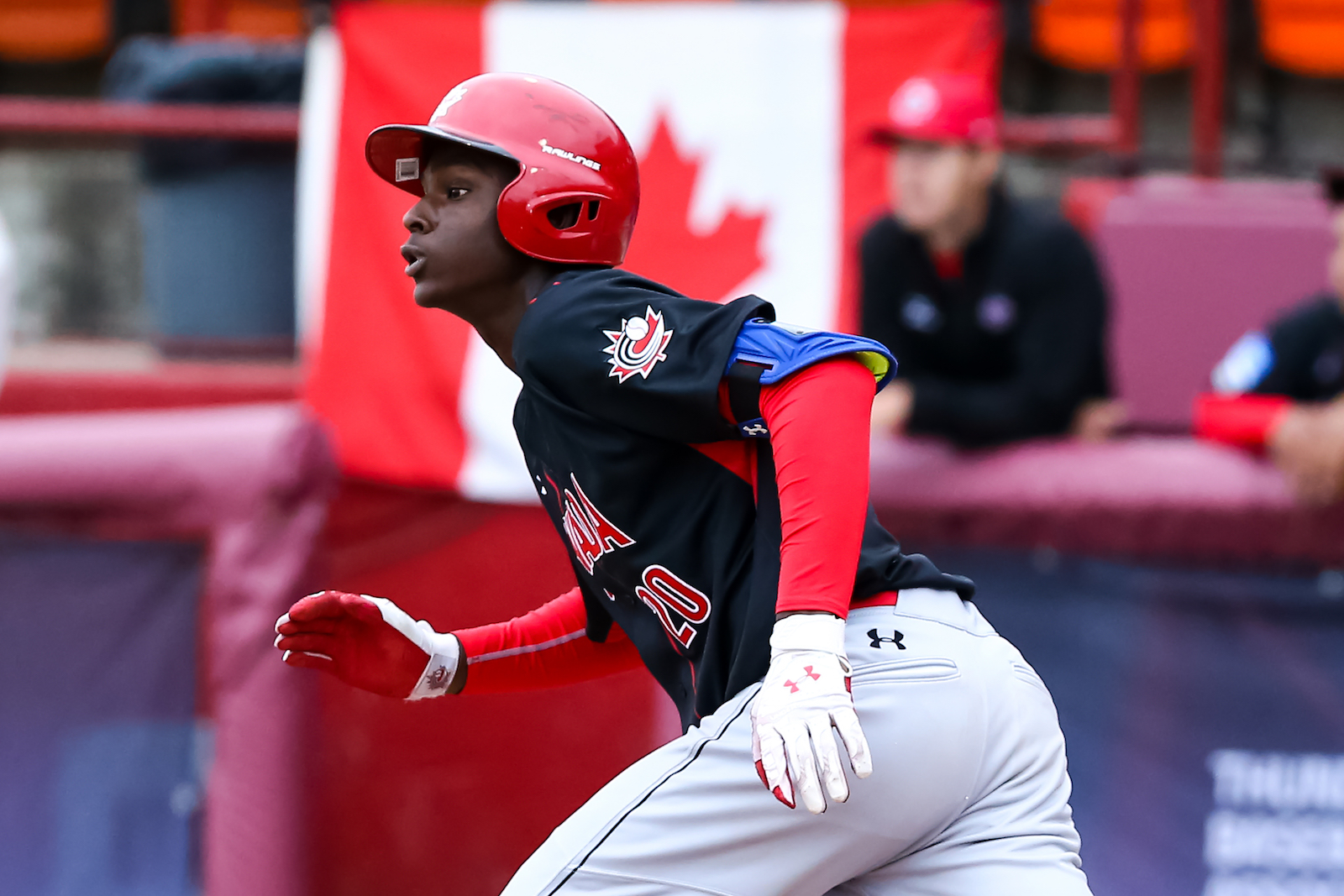 Baseball Canada names 33 athletes to Spring Training roster