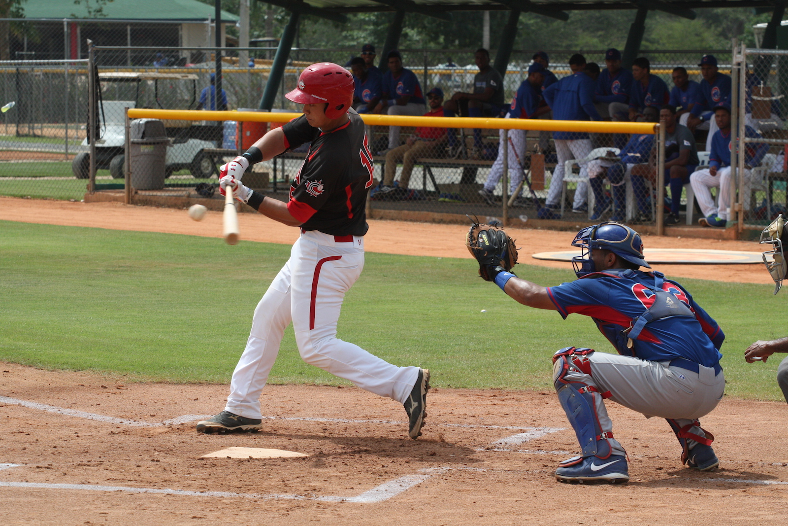 Baseball Canada Announces 2015 Junior National Team Selection Camp Roster