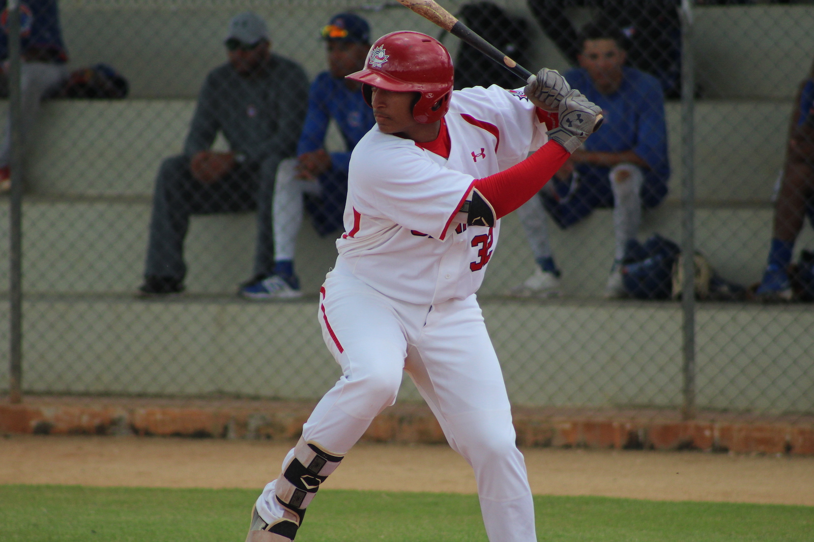 Baseball Canada announces invitees for Junior National Team Selection Camp